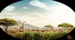 Paysage savane dans paysage savane vue_savane2-300x161